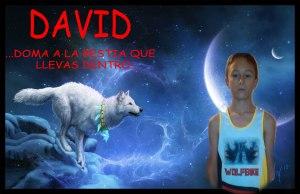 david-jr-fefinitivo